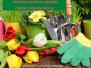 2021-04-16: wiosenne prace w ogródku