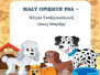 2018-11-06: Mały opiekun psa