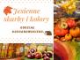 2020-11-09: jesienne skarby i kolory
