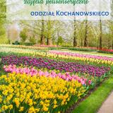 Wiosenne kwiaty w roli głównej