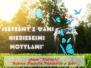 2021-05-16: niebieskie motyle