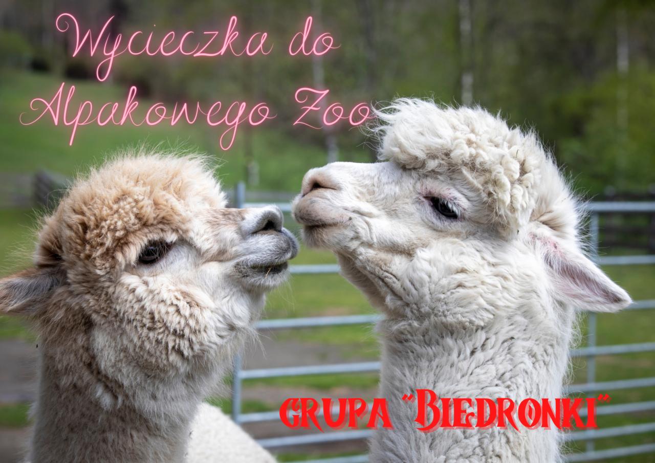 1. zoo